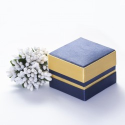 Индийский футляр синий - 10